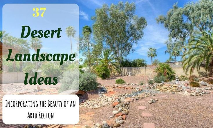 When I moved to Southwest 13 years ago, one of my major worries was how well many of my beloved plant species would hold up to the dry heat and low humidity of the area. Although I quickly discovered most plants will thrive with the proper attention and care, there are certain types of landscape design and plant picks that are more conducive to the area that allows your landscape to prosper. Minimal plantings, xeriscaping, and arid vegetative picks that require very little natural watering…