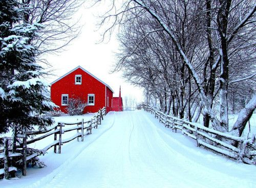 this is seriously gorgeous.: Winter Scene, Red House, Dreams, New England, Winter Wonderland, Snow, White Christmas, Red Barns