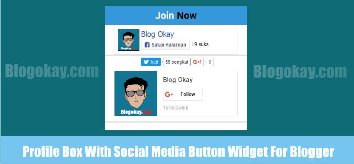 Profile Box With Social Media Button Widget For Blogger