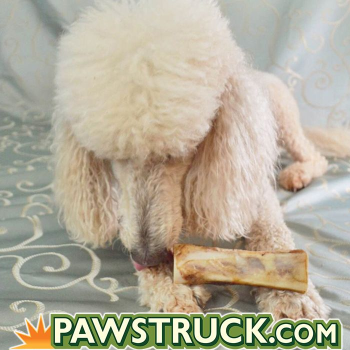 130 best images about pets preferring pawstruck on pinterest what would bully sticks for dogs. Black Bedroom Furniture Sets. Home Design Ideas