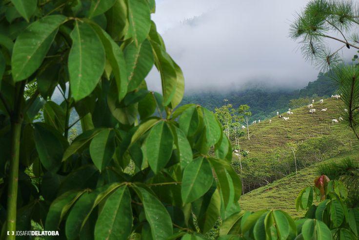 Lanquin, Guatemala #josafatdelatoba #cabophotographer #travels #guatemala # #landscapephotography #lanquin