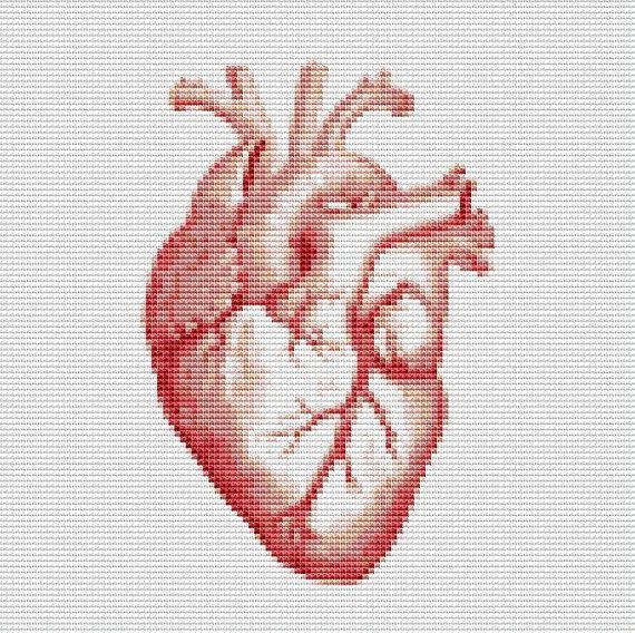 Human Heart Cross Stitch Pattern, Human Anatomy Instant Download Cross Stitch Chart