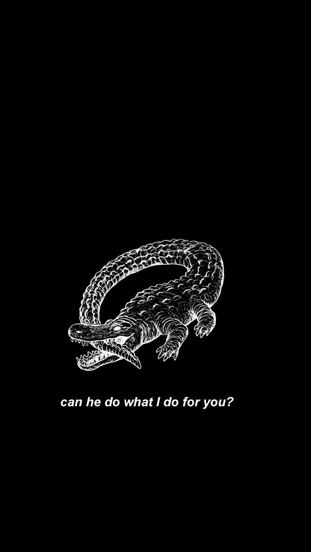Catfish and the Bottlemen - Red