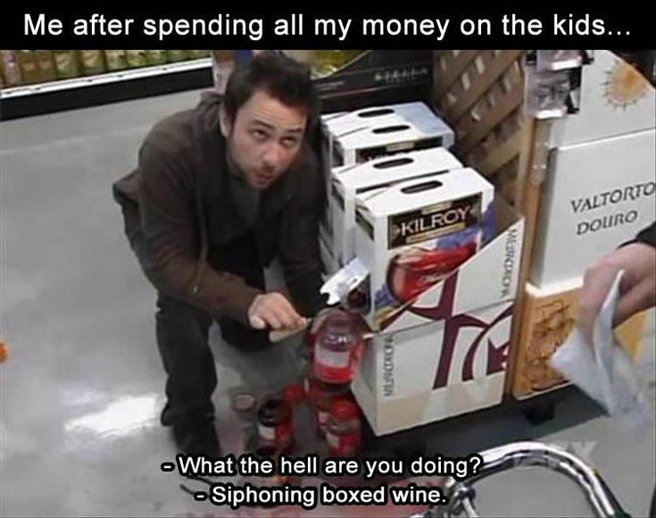 z-funny-pictures-1-6 funny pictures with captions pictures funny