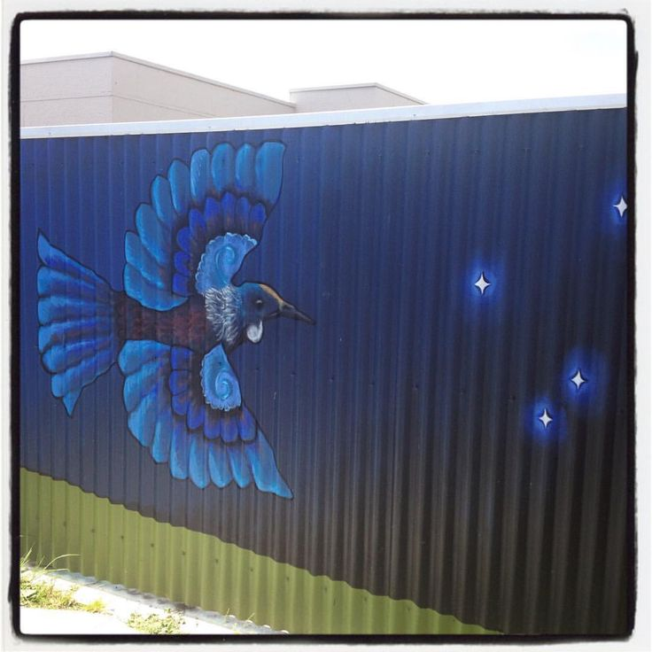 Managed to get his wee dude up today :) #tui #mural #nznative #streetart