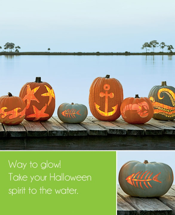 sea themed carved pumpkins on dock find tampa bay area halloween events at http - Halloween Bay Area Events