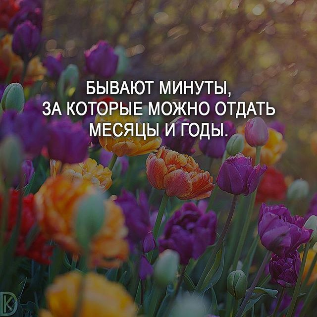 #мотивация #цитаты #мысли #любовь #счастье #цитатыизкниг #жизнь #мечта #саморазвитие #мудрость #статусы #мотивациянакаждыйдень #цитатывеликихженщин #мыслинаночь #жизнь #совет #deng1vkarmane