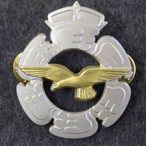 Finnish Air Force beret badge.