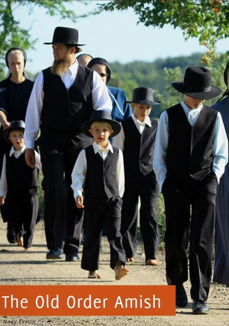 the culture and religion of the old order amish essay  in this paper i will explain the amish culture also known for being the older people or old order amish the amish culture is more  amish religion essay.