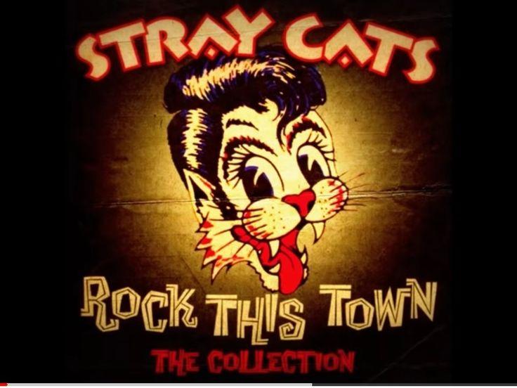 Pin by Blair DeVorr on Kitties Stray cat strut, Band