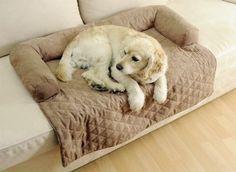 Ein eigenes Sofa für das Haustier - ob Hund oder Katze dieser kuschelige weiche Bezug wird allen tierischen Mitbewohnern nicht nur gefallen sondern sichert ihnen ihren eigenen Platz auf der Couch. Der eigene Sofa- oder Sitzmöbelbezug bleibt durch die Tiercouch vor Tierhaaren und Gerüchen geschützt. https://www.plus.de/p-1258892000?RefID=SOC_pn