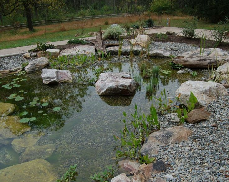 94 best images about ponds and bogs oh my on pinterest for Yard pond filters