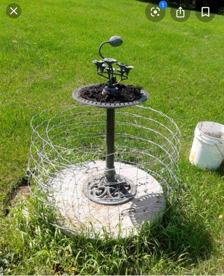 Pin by Mari Johnson on Backyard Bliss in 2020 Septic