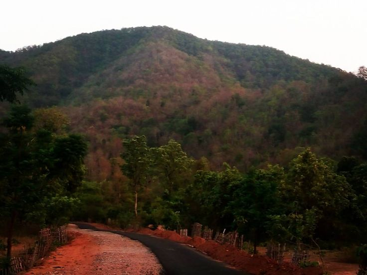 Sarju Valley Latehar #latehartourism #jharkhandtourism #incredibleindia #valley #naturalbeauty #govindpathak