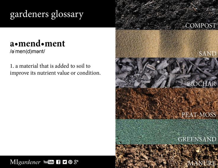 10 best gardeners glossary images on pinterest edible garden know what a soil amendment is by using this handy gardeners glossary fandeluxe Gallery