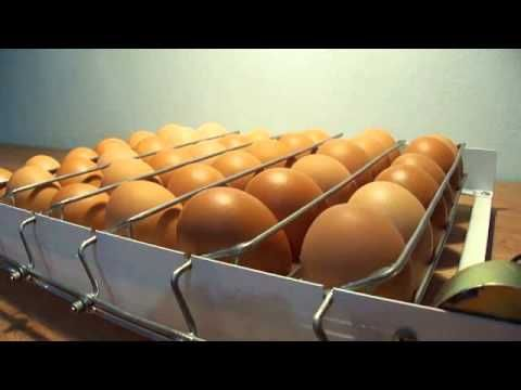 egg turner - YouTube