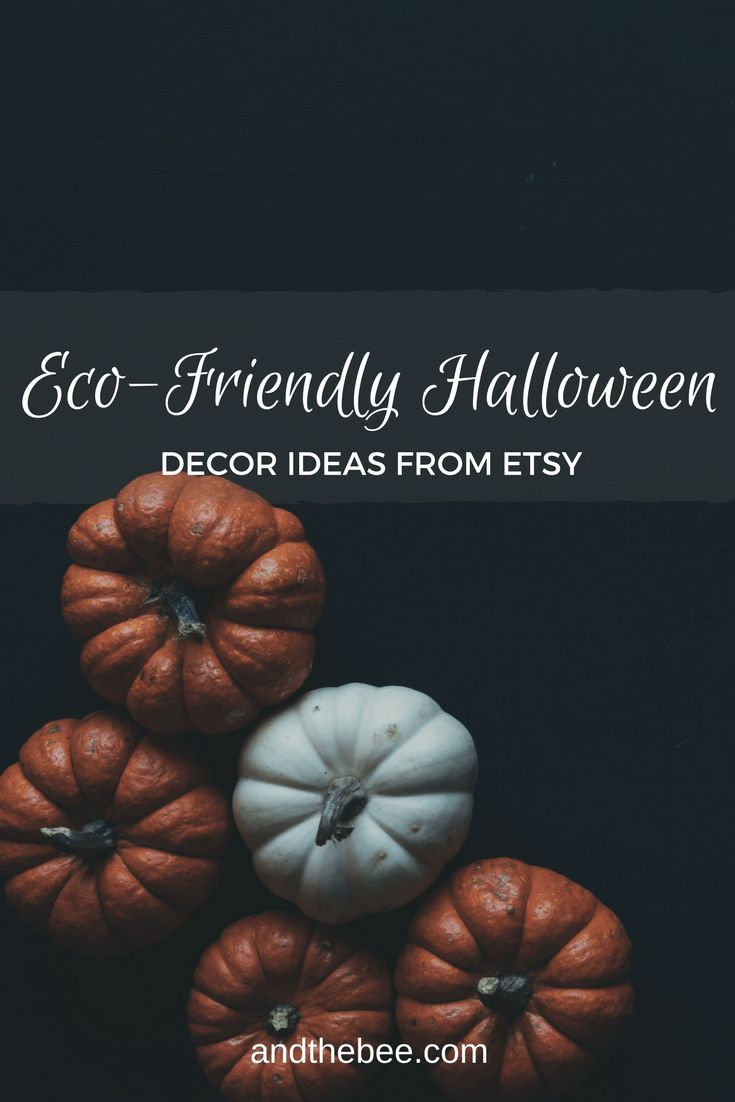 Best 25 Eco Friendly Ideas On Pinterest Sustainability Sustainable Living And Green Tips
