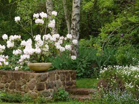 edna walling gardens - love the use of stone wall and blend of flowers and trees.