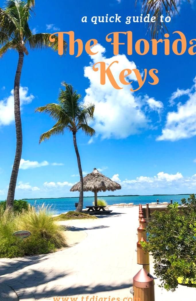 Five Days In The Florida Keys Where To Stay What To Do See And Eat From Key Largo To Key West Florida Keys Beaches Florida Keys Vacation Resorts Florida Keys