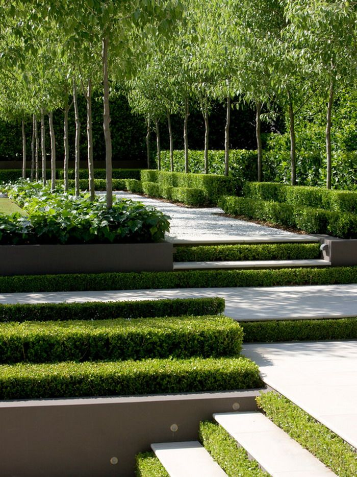 189 best garden design images on pinterest backyard for Formal landscape design