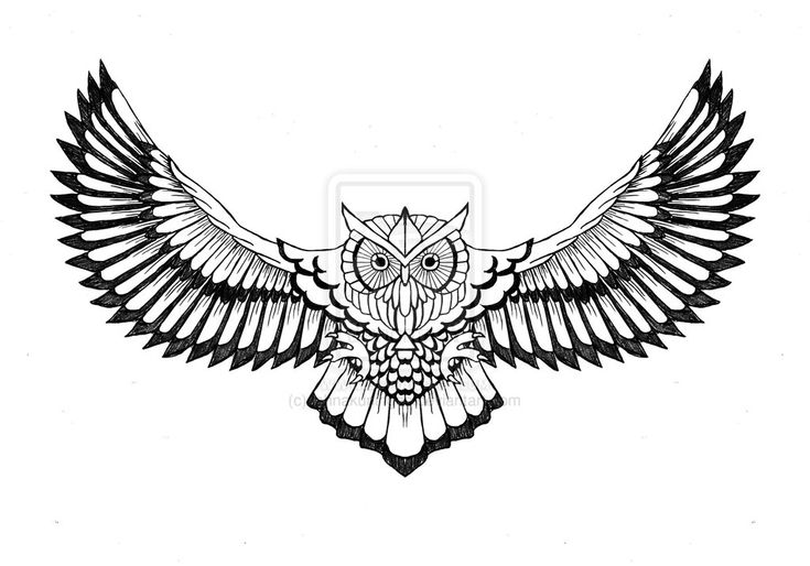 Flying owl tattoo-Suitable for chest and upper back area, the flying owl tattoo looks very striking. Description from pinterest.com. I searched for this on bing.com/images