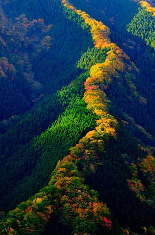 Autumn in Namego Valley, Tenkawa Mountain, Nara, Japan