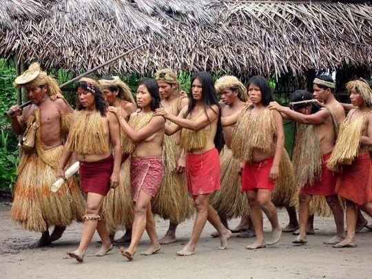 17 Best images about Amazon Rainforest on Pinterest ...