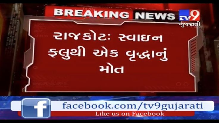 2 fresh swine flu cases reported in Rajkot,One died during treatment.  Subscribe to Tv9 Gujarati: https://www.youtube.com/tv9gujarati Like us on Facebook at https://www.facebook.com/tv9gujarati Follow us on Twitter at https://twitter.com/Tv9Gujarati Follow us on Dailymotion at http://www.dailymotion.com/GujaratTV9 Circle us on Google+ : https://plus.google.com/+tv9gujarat Follow us on Pinterest at http://www.pinterest.com/tv9gujarati/