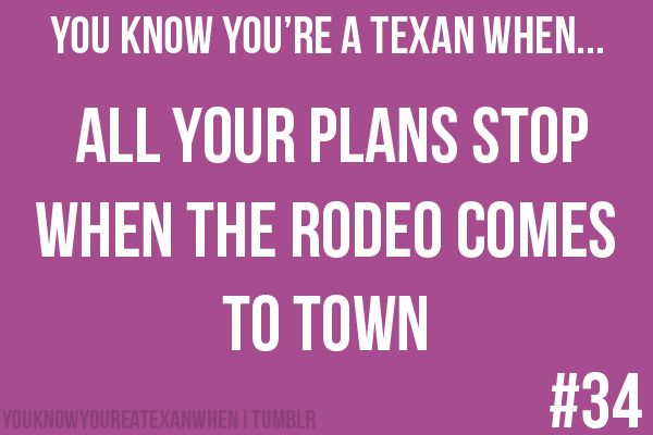 texans love rodeo houston