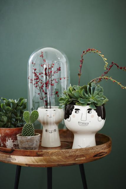 I love the wall color and the different textures and sizes of the plants,the big face of the vase #byw