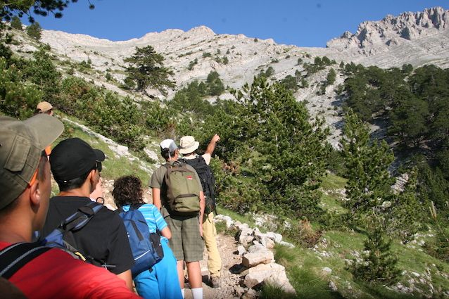 Η Trekking Hellas, η πρώτη ελληνική εταιρεία που έφερε και καθιέρωσε στην Ελλάδα τον τουρισμό υπαίθρου, συμπληρώνει φέτος τριάντα χρόνια από τη δημιουργία της.…
