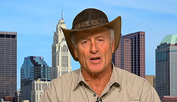 Harambe The Gorilla: Jack Hanna Interview Concerning Lethal Shots [Video]