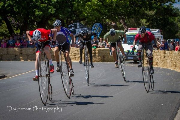 Evandale Village Fair & National Penny Farthing Championships, photo by Benita Bella and article for think-tasmania.com