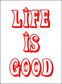 """""""LIFE"""" is good - but sometimes it requires us to shift our perspective.  :p  #quote #quotes"""