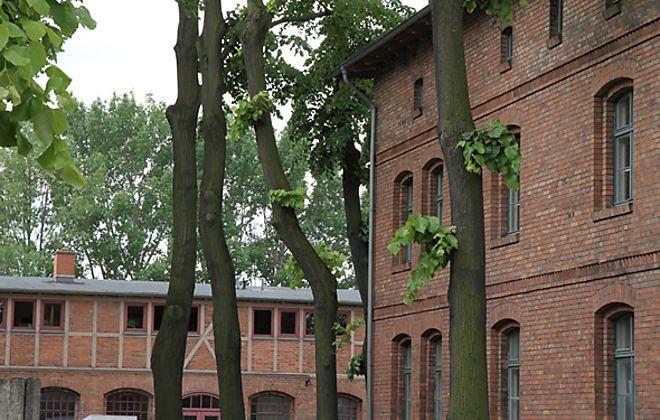 In der Alten Börse Berlin-Marzahn wird die WM 2014 nicht nur zum geselligen Grillabend unter freiem Himmel. Hier wird außerdem hausgebrautes Bier serviert.