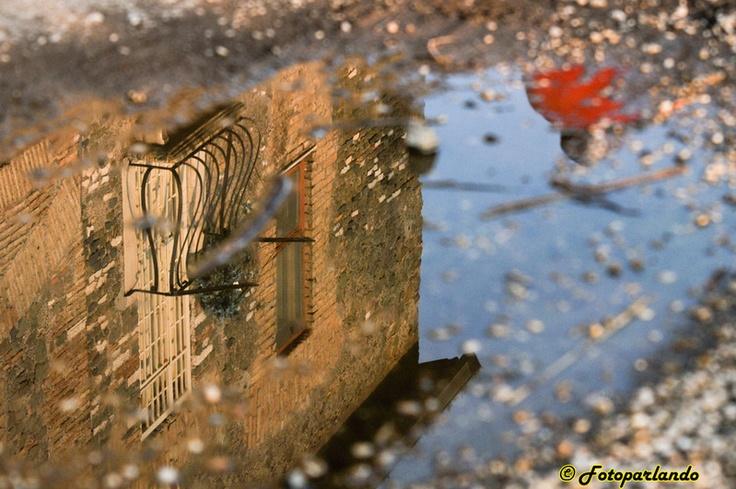 Riflessi al parco degli acquedotti - Roma