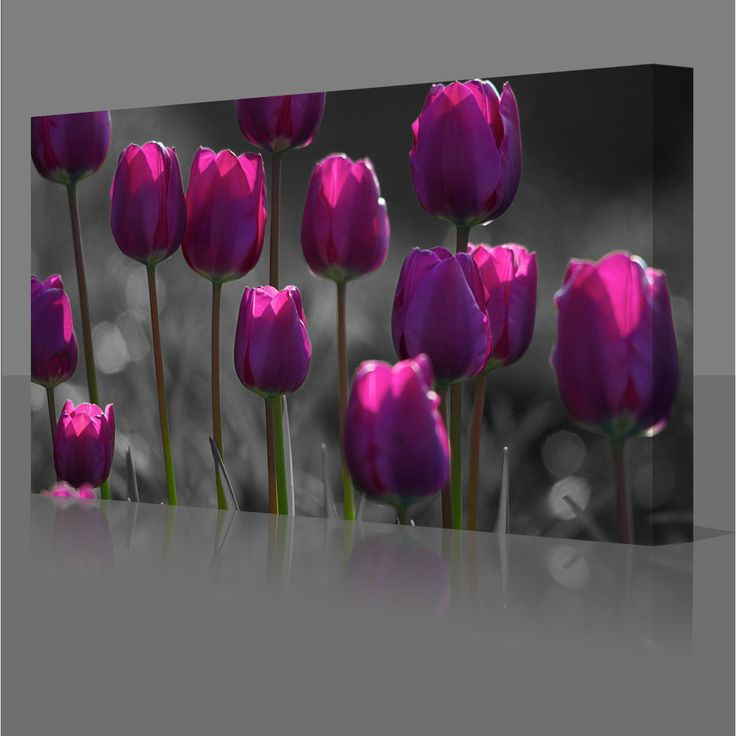 Purple Tulips Flowers Large 30x20 Inch Framed Canvas Wall Art Picture Print