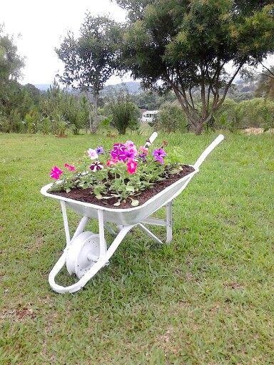 horta e jardim livro : horta e jardim livro:Carrinho de mão com flores