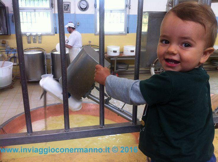 Visita al caseificio con Sebastiano