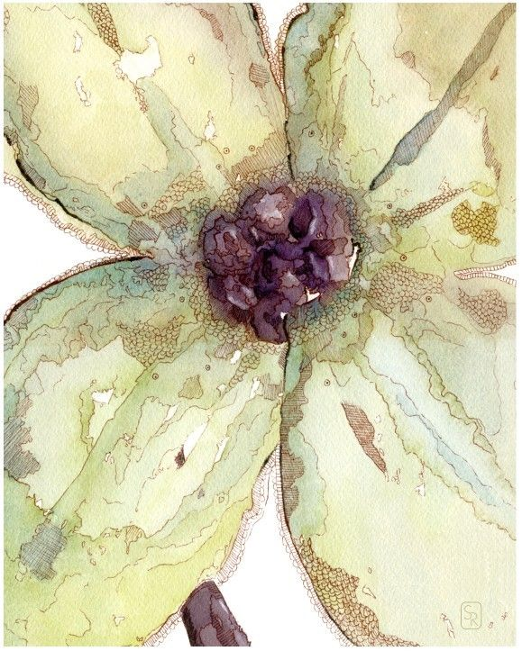 Watercolor There was a Flower. $22.00, via Etsy.