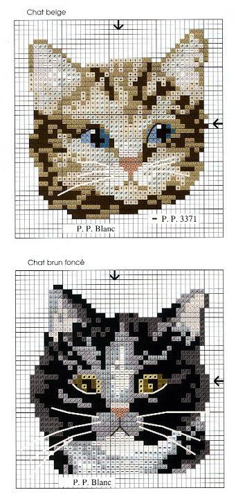 DFEA hors-serie CATS 23 - Lita Zeta - Álbumes web de Picasa
