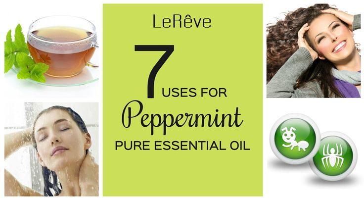 A highly versatile aromatherapy oil, Peppermint is a natural alternative to traditional medicines and chemicals. A must have oil in your first-aid kit! Here are just 7 common uses for Peppermint Essential Oil: Headache relief, bad breath, relieve heartburn, drowsiness, stomach ache, repel spiders and ants, air freshener.