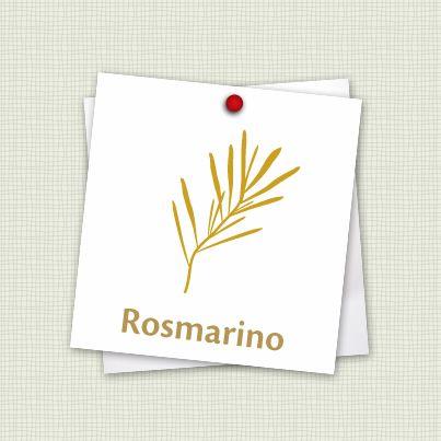 """Come conservare il #rosmarino? Una fra le piante aromatiche più profumate e resistenti anche a basse temperature. Come proteggerlo d'#inverno? Procuratevi del tessuto non tessuto con cui avvolgere la pianta, partendo dal basso fino alla cima, assicurandovi di riporre il vaso in un posto asciutto, dove non prenda pioggia, ma soleggiato. Prima di mettere """"a riposo"""" la pianta ricordatevi di fare la vostra scorta in #cucina: tagliate alcuni rametti e staccate le foglie, da essiccare o congelare."""