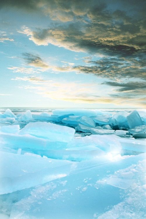 1000 Ideas About The Tundra On Pinterest Northern