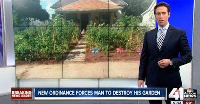 Θα δείτε τα ραδίκια …ανάποδα. Αμερικανική οικογένεια στην πολιτεία του Μισούρι διατάχθηκε από την αστυνομία να καταστρέψει τον λαχανόκηπο που είχε δημιουργήσει στην οικία που διατηρεί , διότι είναι παράνομη η καλλιέργεια λαχανικών με νόμο, αναφέρει σχετικό αμερικανικό δημοσίευμα. Η οικογένεια που αναγκάστηκε να προβεί στην καταστροφή του λαχανόκηπου της , έμεινε άναυδη από τον…