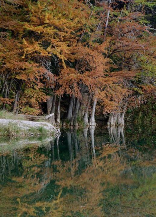 17 Best images about garner state park on Pinterest ...