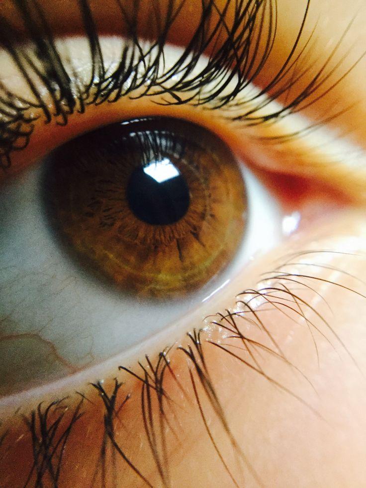 Самые красивые карие глаза в мире фото процессе