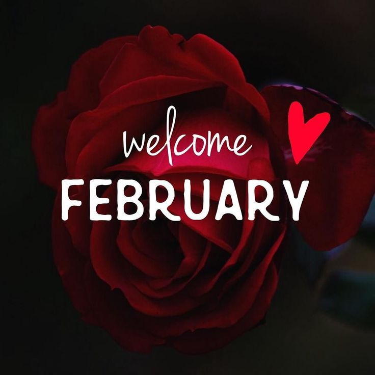 Happy February from all of us at @goldencoast_hotel & Xenotel Group Hotels! 'Tis the month of love giving hope and the gateway to spring 2017 so let's rejoice together! #feelingloved #newmonth #monthoflove #monthforlovers #28daysoflove #february2017 #welcomefebruary #hellofebruary #byejanuary #lastwintermonth #awesomemonth #newmonthnewstart #instagood #instamood #instadaily #instaaddict #igdaily #instalove #igaddict #instagreece #instatravel #travelgram #xenotelgrouphotels