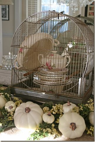 display idea, bird cage without the bottom