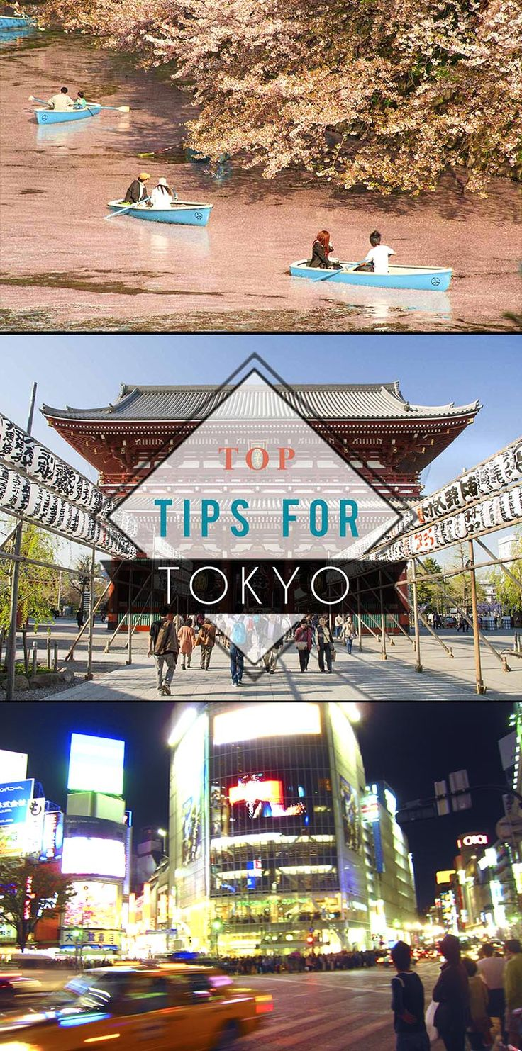 Top Tips for Tokyo - all you need to know before travelling to Japan! Travel Blog